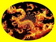 dragone1.jpg