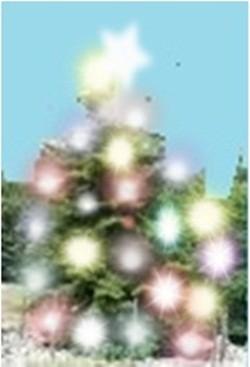 albero 1.jpg